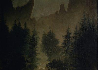 Forest in My Dreams / Pădurea din vis
